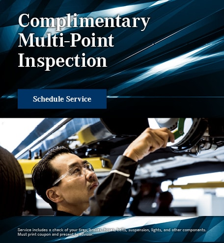 Complimentary Multi Point Inspection