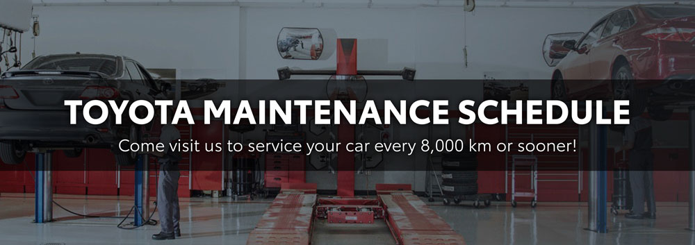 Toyota Maintenance Schedule