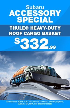 Thule® Heavy-Duty Roof Cargo Basket Special