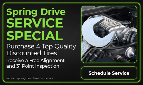 Spring Drive Service Special