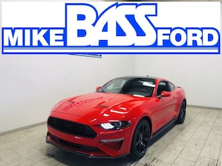 2020 Ford Mustang Ecoboost Coupe 1FA6P8TH6L5162413