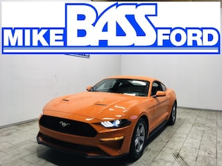2020 Ford Mustang Ecoboost Coupe 1FA6P8TH9L5129860