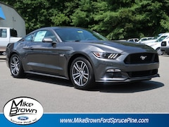 2017 Ford Mustang GT Car