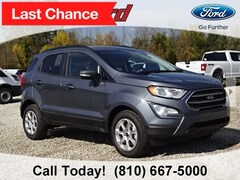 New 2018 Ford EcoSport SE SUV MAJ3P1TE8JC224886 for sale in Imlay City