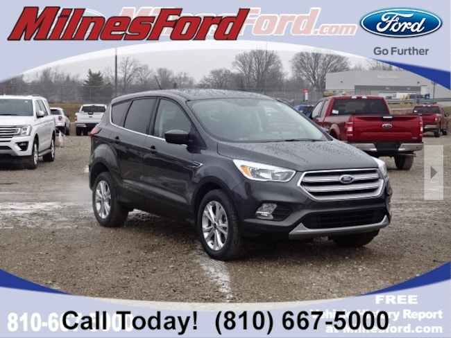 New 2019 Ford Escape SE SUV for sale in Lapeer