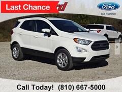 New 2018 Ford EcoSport SE SUV MAJ3P1TE6JC224885 for sale in Imlay City