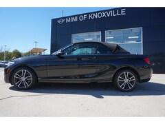 2019 BMW 230i 230i xDrive Convertible Convertible