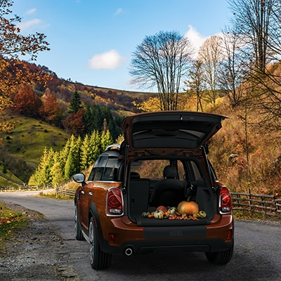 MINI Countryman Interior and Exterior Vehicle Features