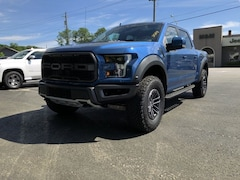 New  2019 Ford F-150 Raptor Truck for sale  in Liberty NY