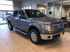 2014 Ford F-150 XLT Truck in Boone, IA