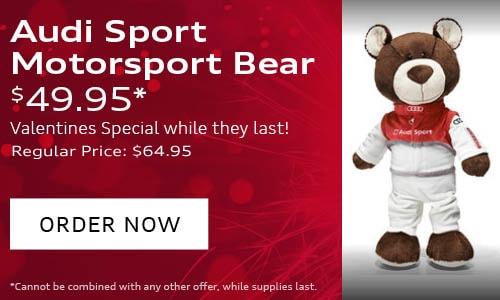Audi Motorsport Bear