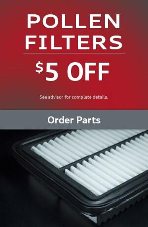 Pollen Filters