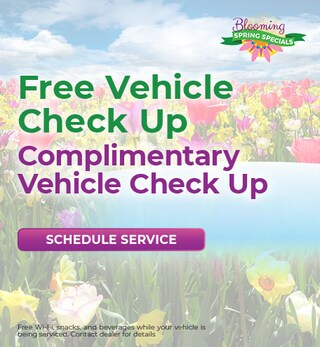 Free Vehicle Check Up April