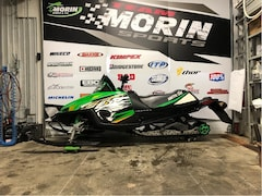 2010 ARCTIC CAT CFR1000
