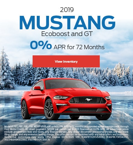 2019 Mustang Ecoboost and GT