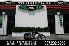 2007 Hell Bound Steel Fury MOTORCYCLE