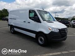 2019 Mercedes-Benz RWD Cargo Van