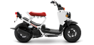 Honda - Ruckus(Blanc)