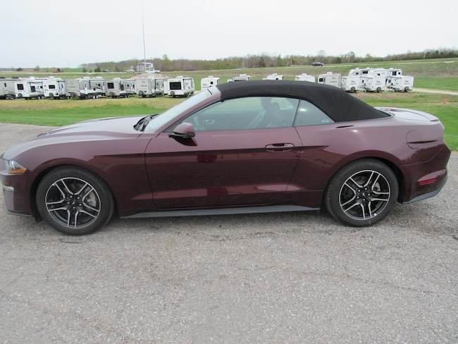 2018 Ford Mustang ecoboost convertable CONVERTIBLE