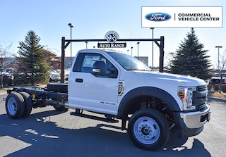 new 2019 Ford F-450 Chassis XL Truck Regular Cab for sale near Boise