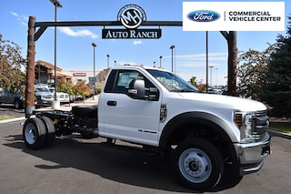new 2019 Ford F-550 Chassis Truck Regular Cab for sale near Boise