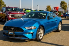 2019 Ford Mustang EcoBoost - Reverse Camera System Coupe