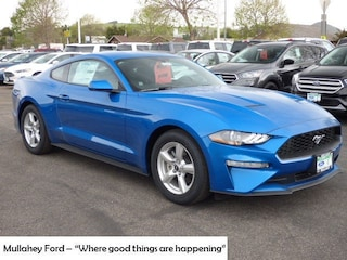 New 2019 Ford Mustang EcoBoost Coupe 1FA6P8TH1K5135408 in Arroyo Grande, CA