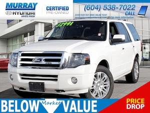 2014 Ford Expedition Limited**NAVI**LEATHER**REAR CAMERA** SUV