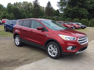 2019 Ford Escape SE Sport Util