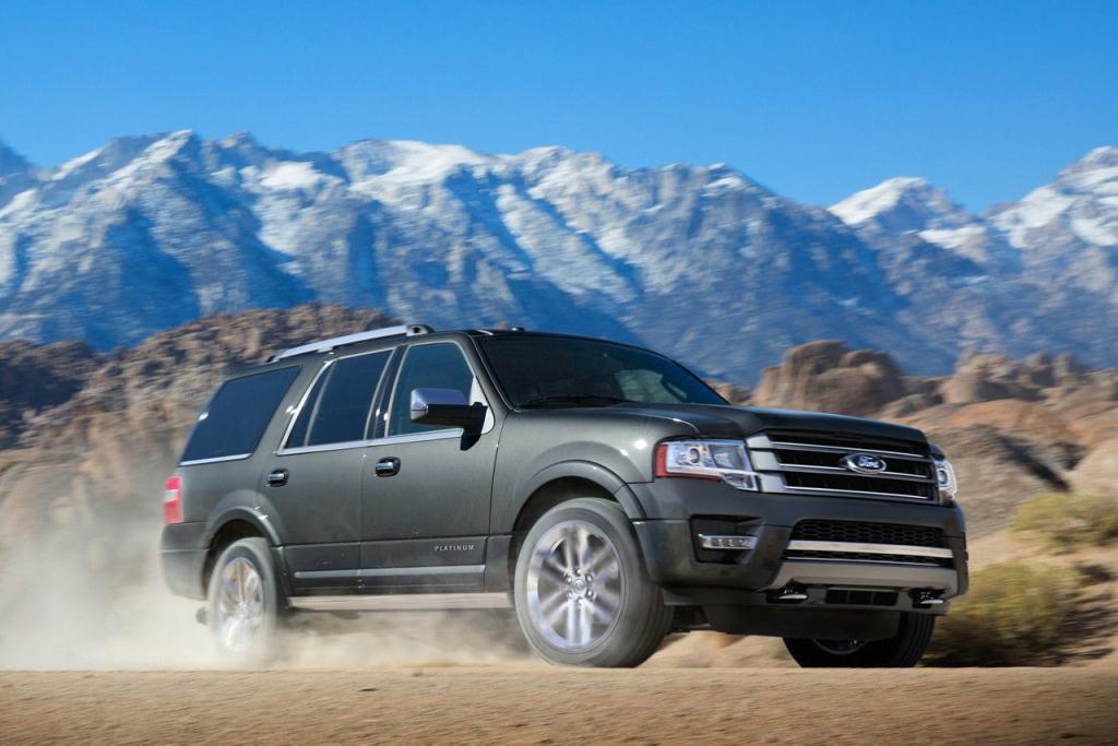 2017 Ford Expedition Platinum in Magnetic