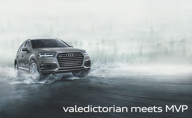 Introducing the 2017 Audi Q7