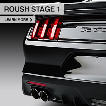roush-stage-1 for sale