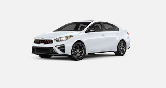 Clear White Kia Forte For Sale in West Palm Beach