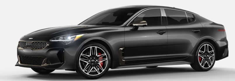 Panthera Metal Kia Stinger For Sale in Carmel, IN