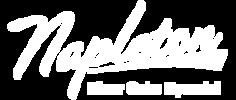 Napleton River Oaks Hyundai