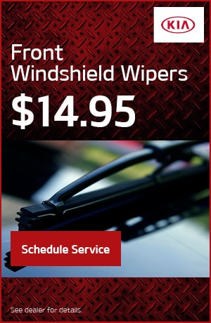 Front Windshield Wipers
