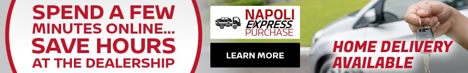 Napoli Express Purchase