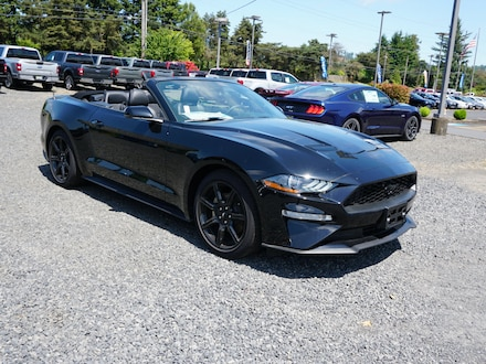 2018 Ford Mustang Ecoboost EcoBoost Premium  Convertible