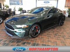2019 Ford Mustang Bullitt Sporty Car