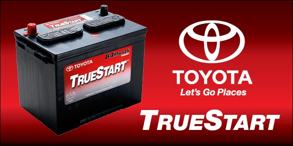 Image result for truestart batteries images