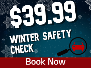 $39.99 Winter Safety Check