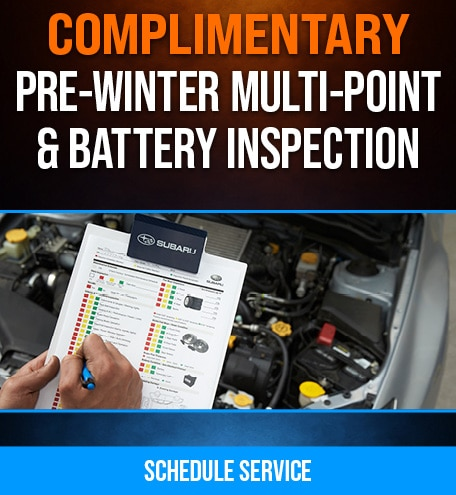Complimentary Pre-Winter Multi-Point & Battery Inspection