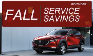 Fall Service Savings
