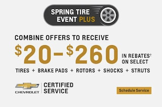 Service - $200 to $260 Rebate