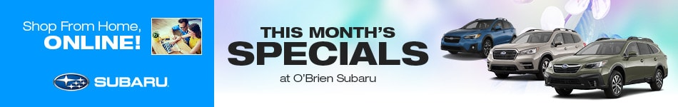 This Month's Specials