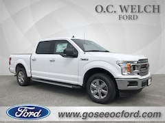 in Hardeeville 2019 Ford F-150 XLT Truck New