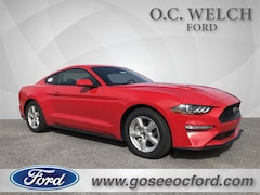in Hardeeville 2019 Ford Mustang Ecoboost Coupe New