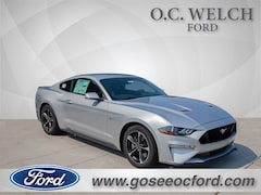 in Hardeeville 2018 Ford Mustang GT Coupe New