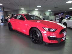 New Ford Vehicles  2019 Ford Shelby GT350 Shelby GT350 Coupe Plymouth, IN