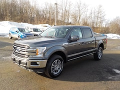 New 2019 Ford F-150 Lariat Truck for Sale in Oneonta NY